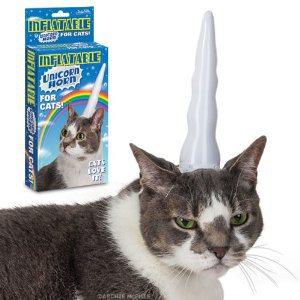 cat-unicorn
